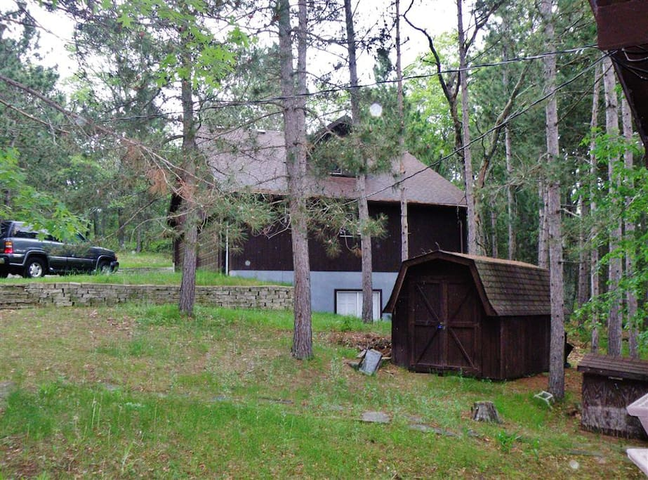 The cabin is surrounded by towering pines.