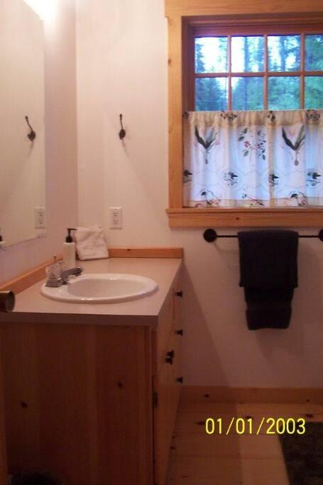 Marshall Cabin-Downstairs Bathroom