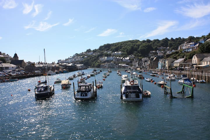 View from Looe bridge. 2 minute walk.