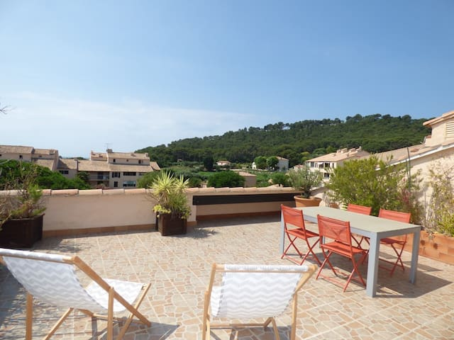 2 rooms with Big terrace of 25m ² in 350M of the Beach