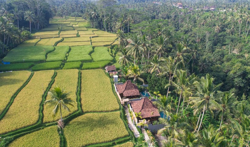 Beautiful Wooden Villa with Valley View Near Ubud