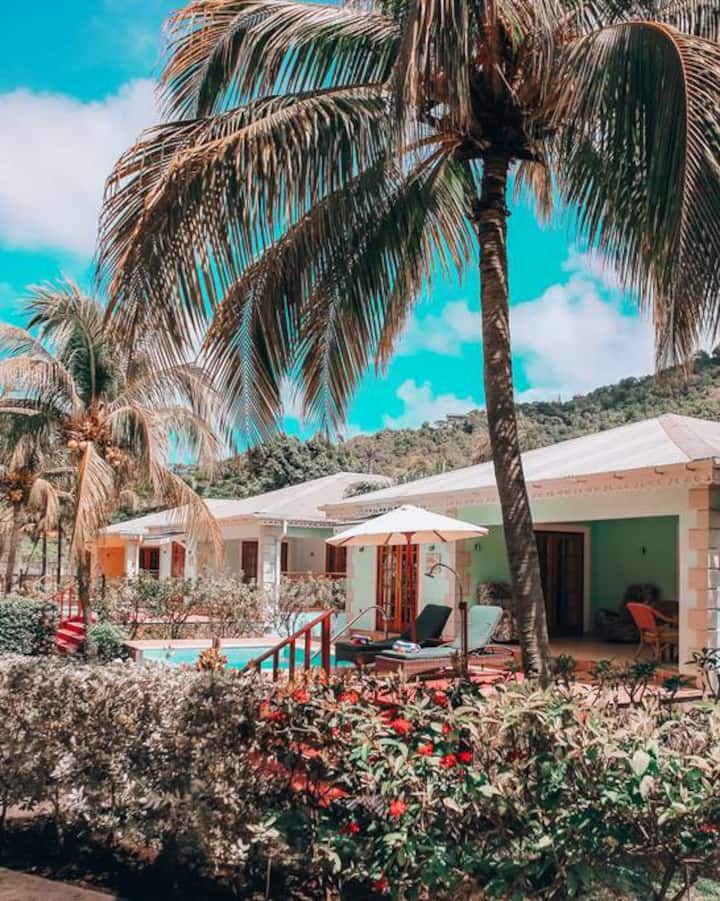 Luxury Villa with Private Pool at Bequia Beach Hotel