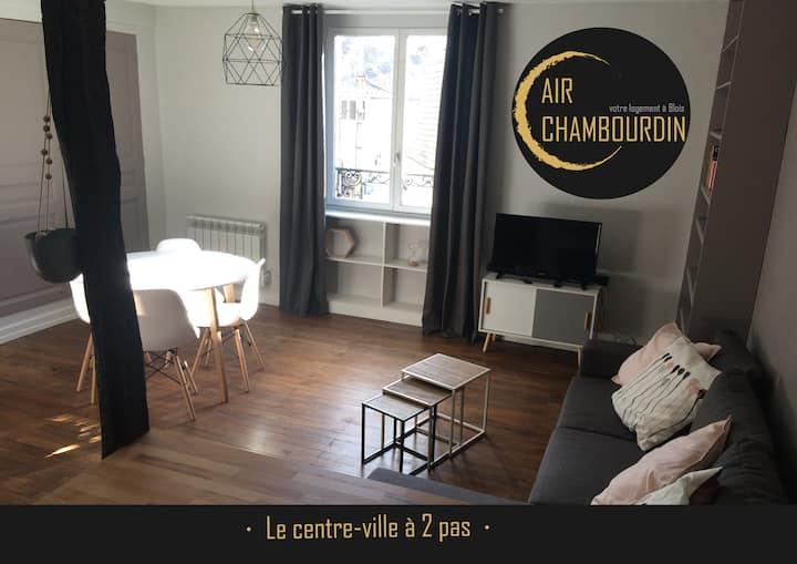 Charmant appartement Blois centre