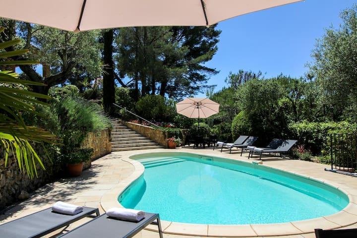 Provencal hilltop villa w/ pool, terrace & majestic vineyard views - dogs OK!