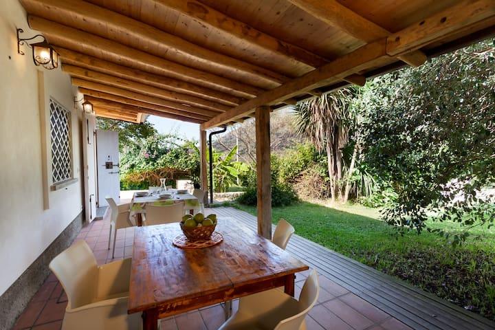 Agricontura with pool - CASA DELLA YUCCA