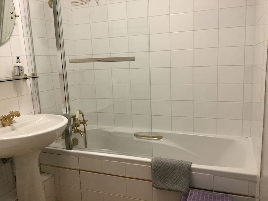 Bathroom with stand in shower.