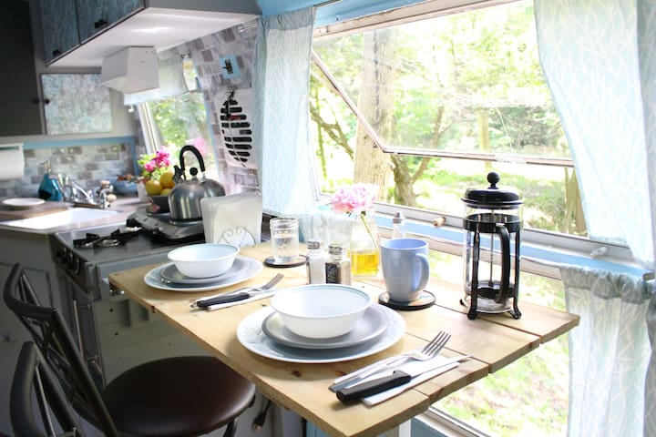 GLAMPING Vintage Airstream with natural pond view