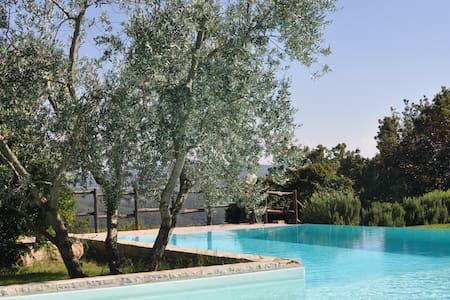 Agriturismo Borgo Casaglia - La fresca Cantina - San Venanzo