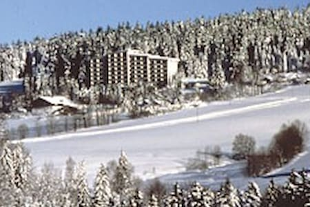 Wunderschöner Urlaub im Bayrischen Wald - Neureichenau - Apartmen perkhidmatan