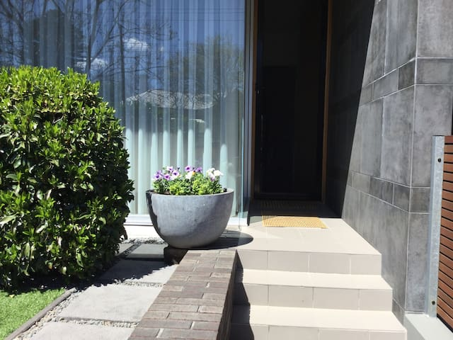 Front steps, leading to the front door