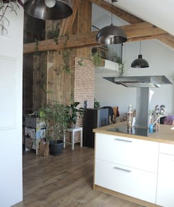 Appartement atypique centre Remiremont - Remiremont - Lejlighed