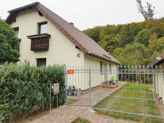DZ, Thüringer-Wald-Haus mit Flusszugang und Garten