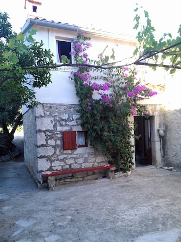 Comfortable apartment for 2 in NP Mljet