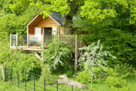 Oakdown Treehouse nr Bath - Colerne