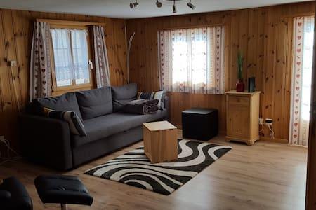 Alpen-Fewo, la Gassa 3, (Flims Dorf), 2.5 Zimmerwohnung