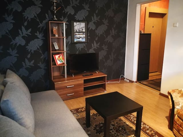 Lovely Private Apartment in Elektrenai