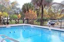 Pool, awesome setting... right next to the park and across the street from Melbourne Harbor!