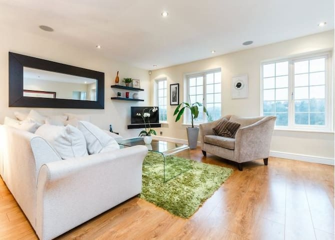 2-12 people: stunning, open-plan - walk into town - Henley on thames