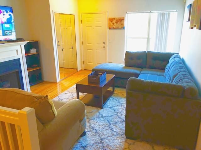 Nice Condo heart of Downtown Detroit- Private room