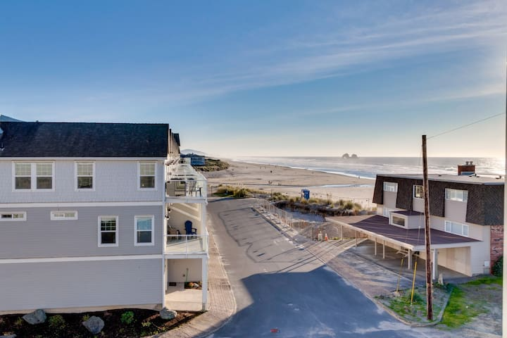 Dog-friendly condo w/ amazing beach/ocean views - walk everywhere!
