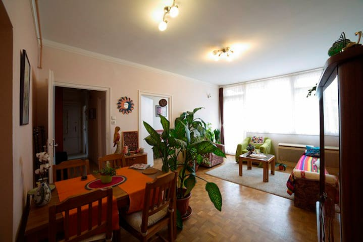 Appartment in the heart of Budapest UTC +1 hour