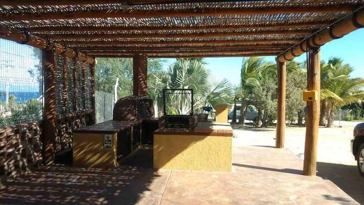 Palma Azul. El Sargento BCS Camping Ground.