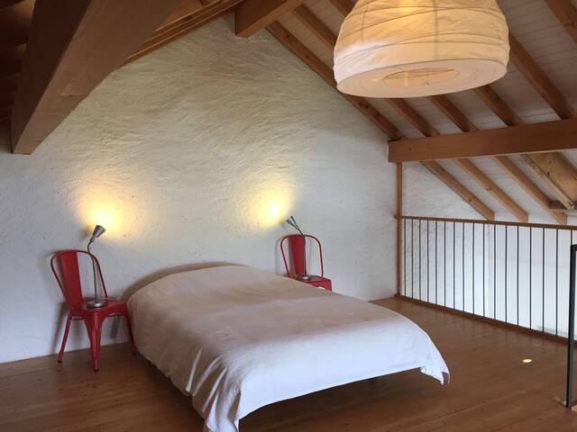 Grand Loft avec vue sur bassin lémanique et Jura