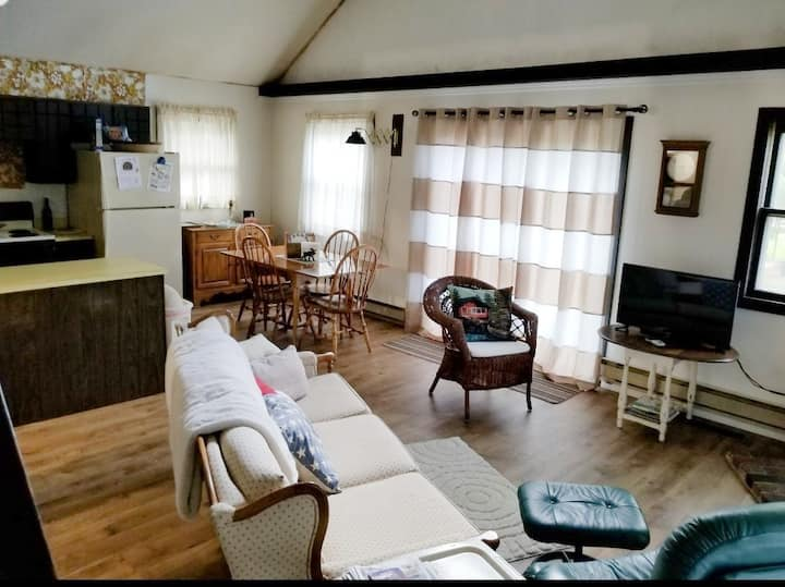 PINE NEEDLE COTTAGE (West Branch, MI): Near Clear Lake, wi-fi, private dock.