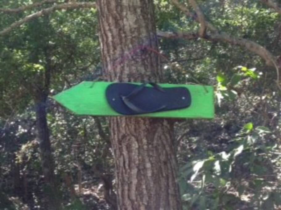 Once you reach the West Point settlement, just follow the green thong tree arrow trail which will lead you to our house