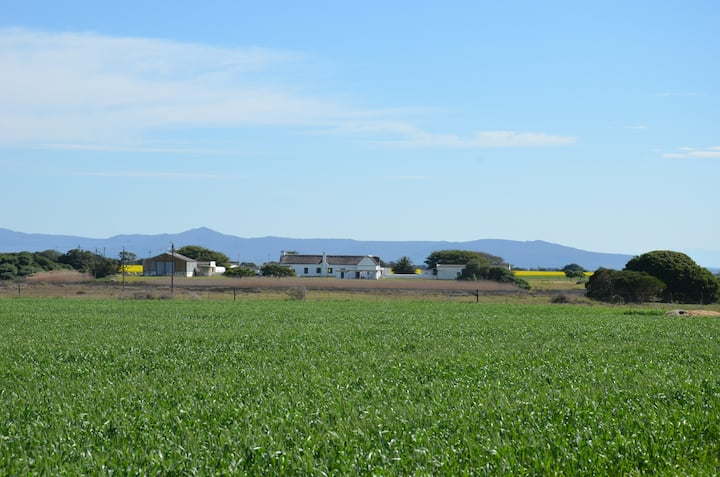 Cape Dutch Farmhouse in the Overberg