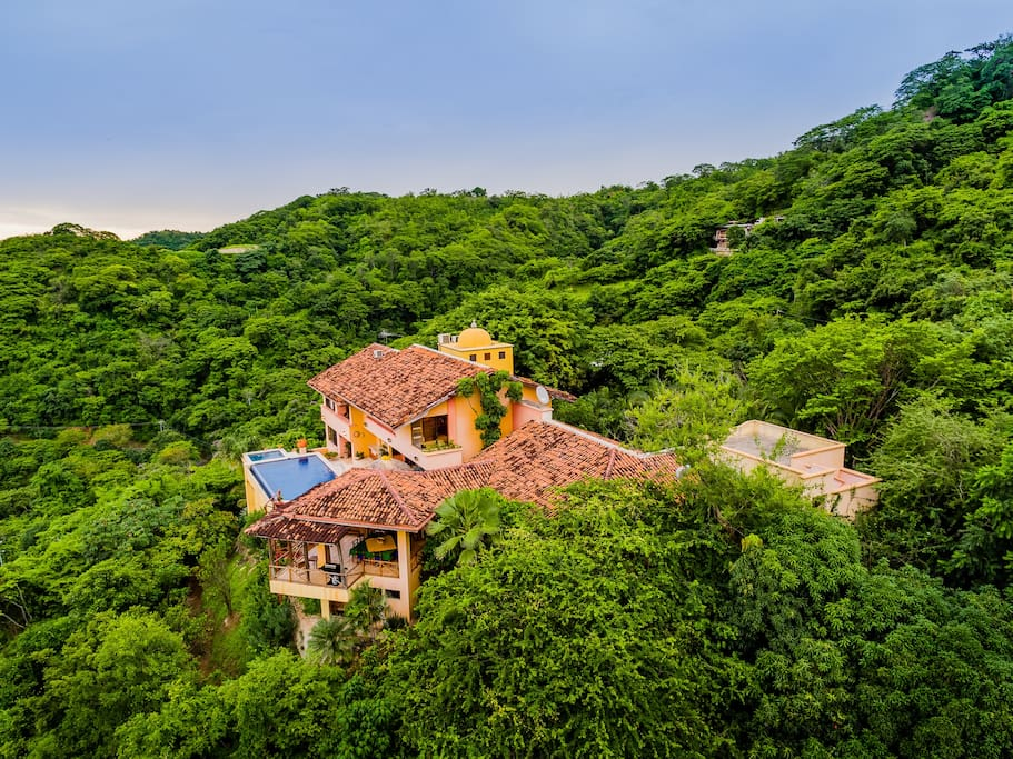 Beautiful green nature surrounding the house (left side view).