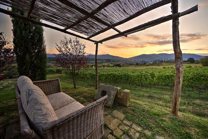 Lambrusco: apartment in Tuscany countryside