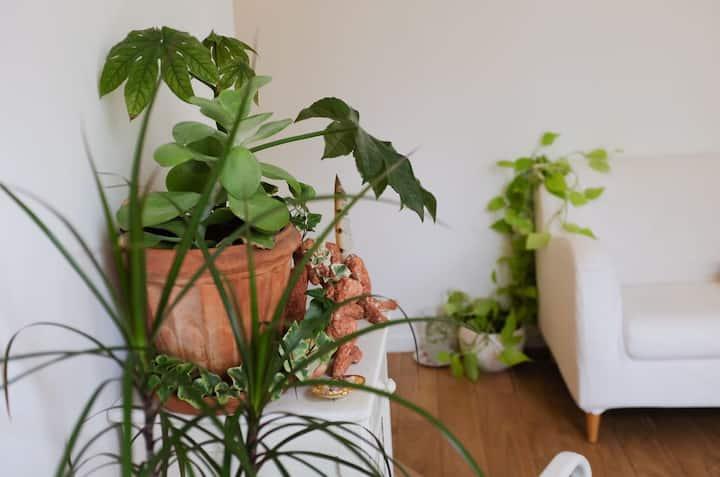 Appartement chaleureux et son joli jardin