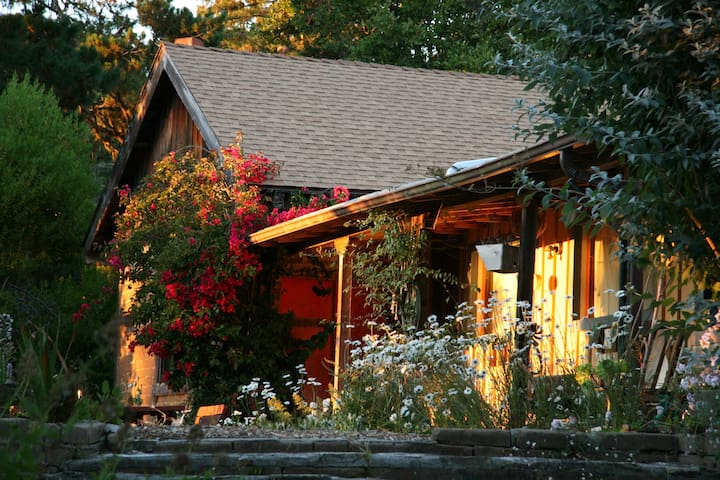 Cathedral Redwood Studio with loft - Carmel Highlands - Muu