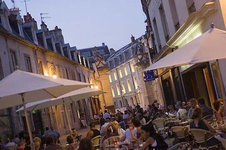 Appartement/centre ville historique - Dijon