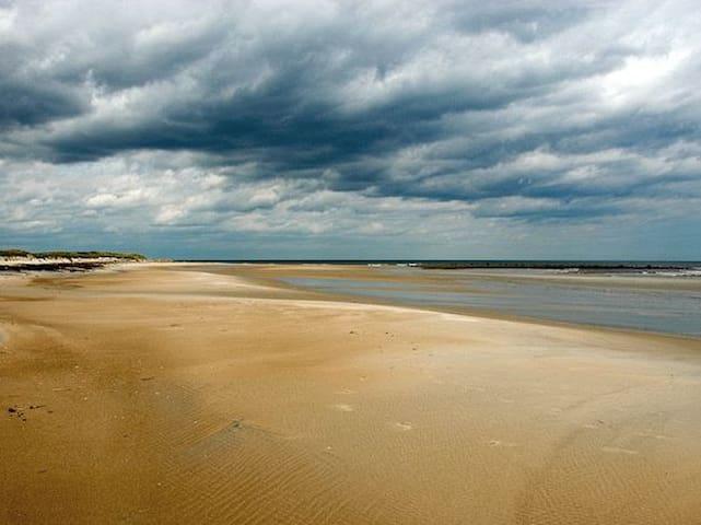 Oasis by the Ocean