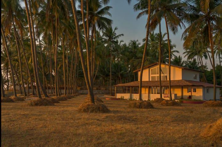Dronagiri room at 574 Fernandes Wadi