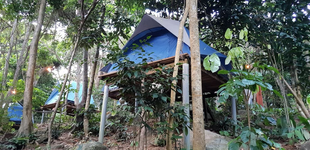 RainForest Camping at Perhentian Island Tent 1