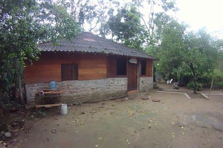 Cabin next a creek
