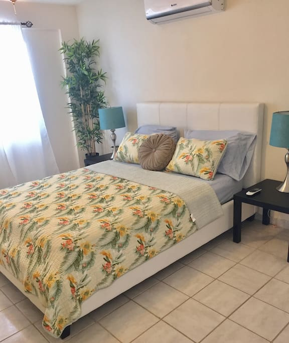 Spacious bedroom with a Queen-sized bed; a Full-sized futon is also in the this room, as well as walk-in closet that doubles as a dressing room. There's a hallway in the bedroom that leads to a beautiful newly renovated bathroom.