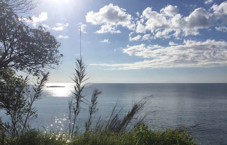 Oasi sul mare nella riserva naturale del Plemmirio