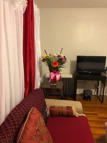 Sparkling 2nd Flr Apt, Near JFK, LGA & NY City **
