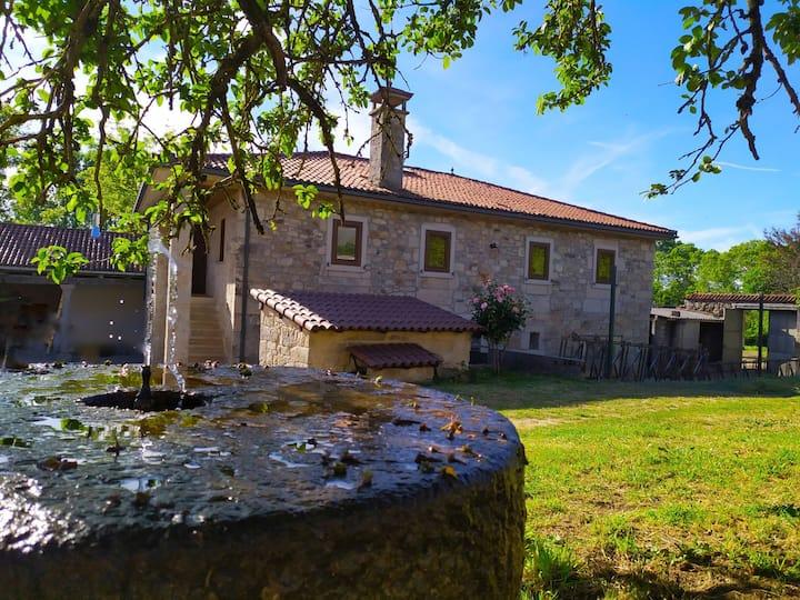 Casa das Árbores