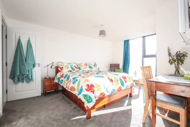 Spacious double room with ensuite - London - Apartment