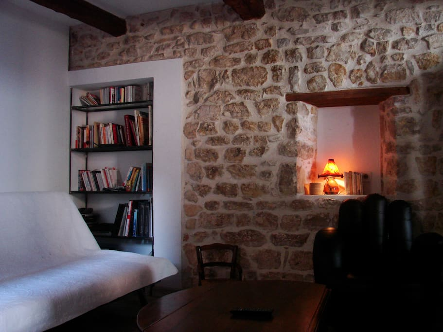 espace salon, télévision et bibliothèque