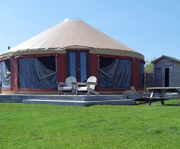 Beachfront Yurt...Just you and the Beach!