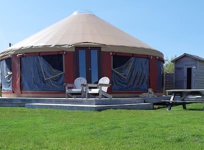 Beachfront Yurt...Just you and the Beach!