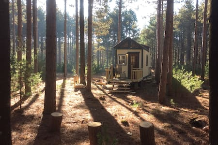 Evergreen Off-Grid Tiny House in the Woods! - Montello