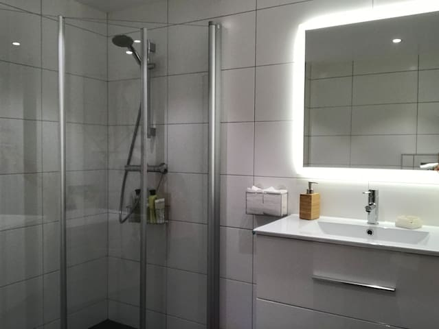 Upstairs bathroom with large 1m by 1m shower. Mirror with LED lights.