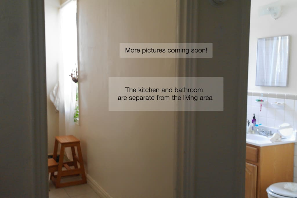 the kitchen and bathroom are separate from the living area, here is a peek